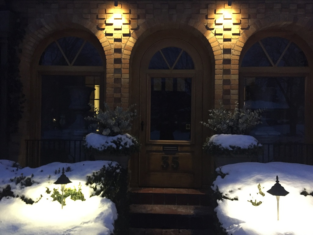 Winter Landscape Lighting